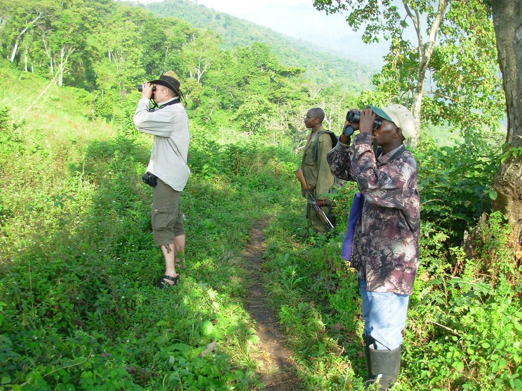 Birding in Kasangali, Rwenzori, Uganda with Africa Geographic