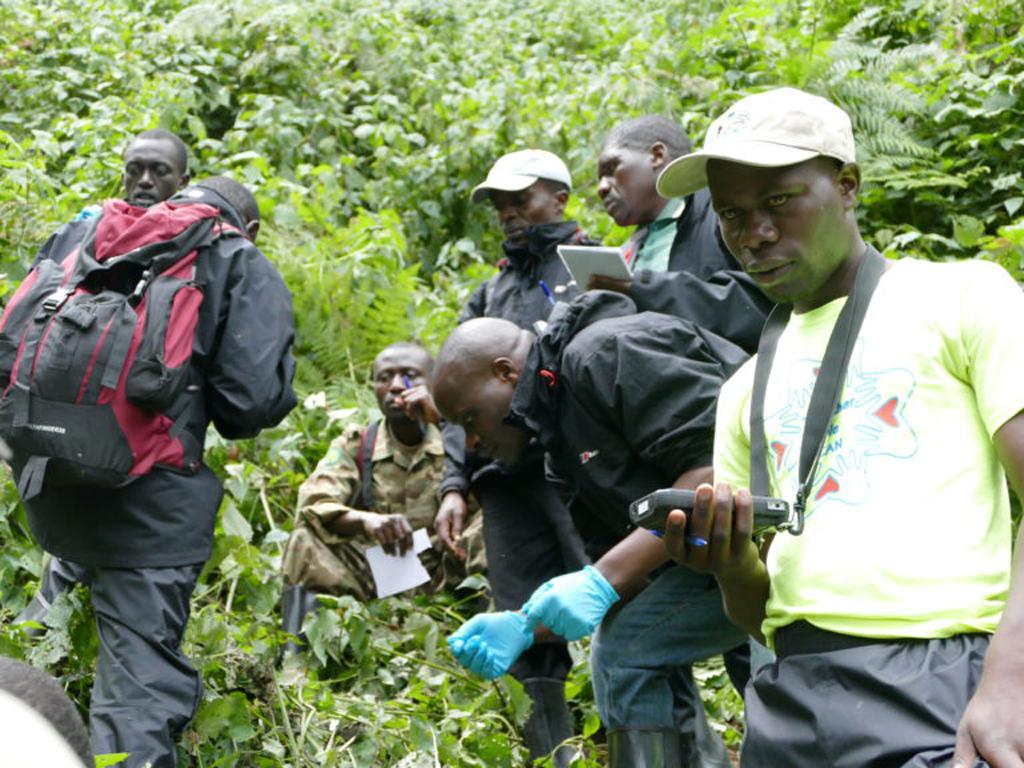 Team members in Bwindi preparing for mountain gorilla population census
