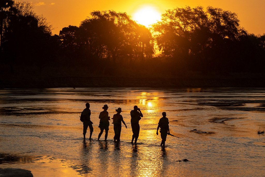 Guests on a walking safari in South Luangwa National Park in Zambia