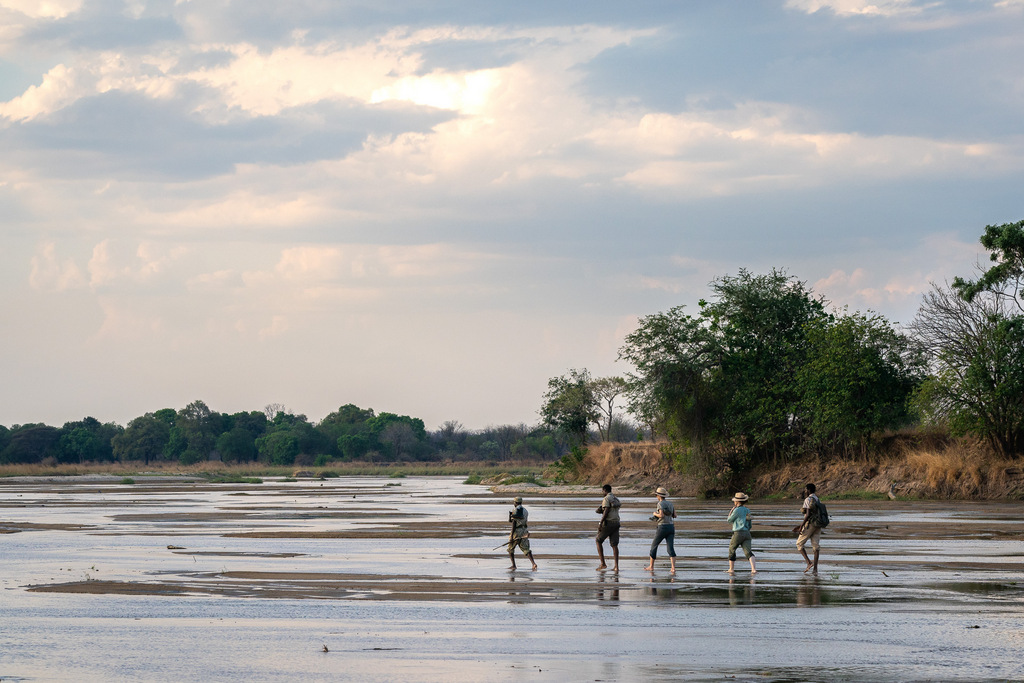 Guests walking through riverbed in South Luangwa National Park in Zambia
