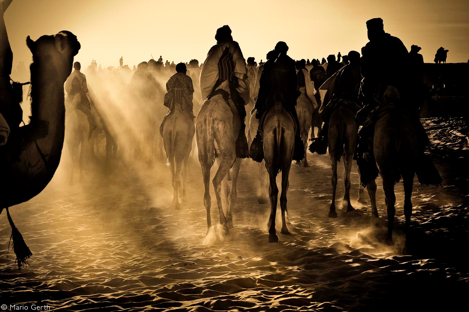 Tuareg on their camels shortly before a race, taking place north of Timbuktu. Mali © Mario Gerth