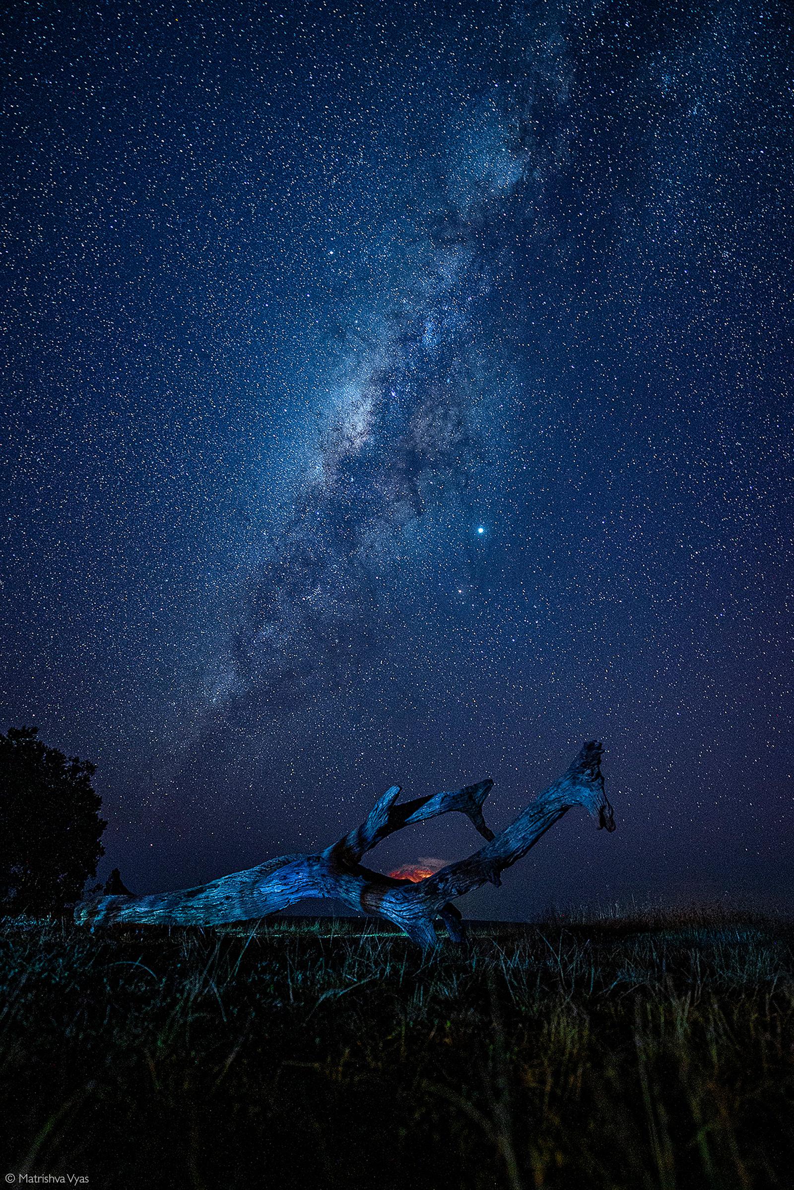 Starscape. Maasai Mara National Reserve, Kenya © Matrishva Vyas