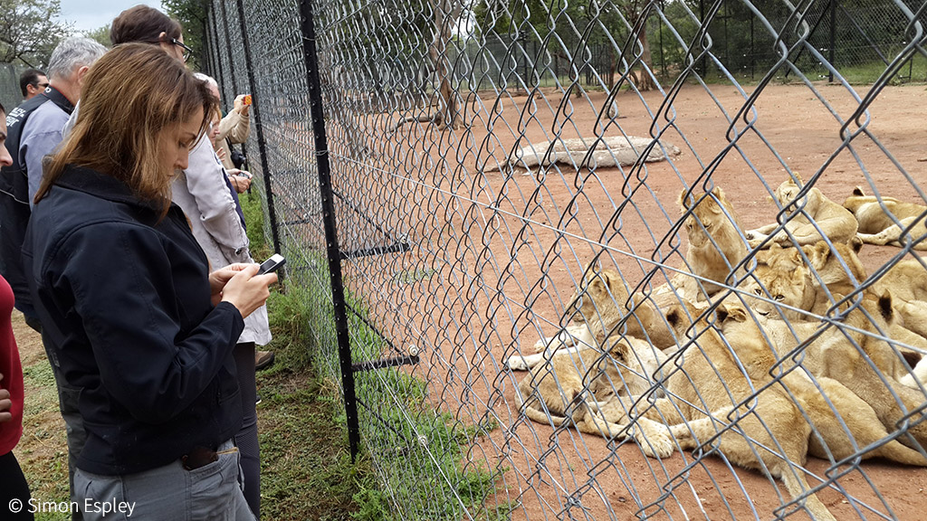 Open letter calls on the World Tourism Organization to ban wildlife interactions - Africa Geographic