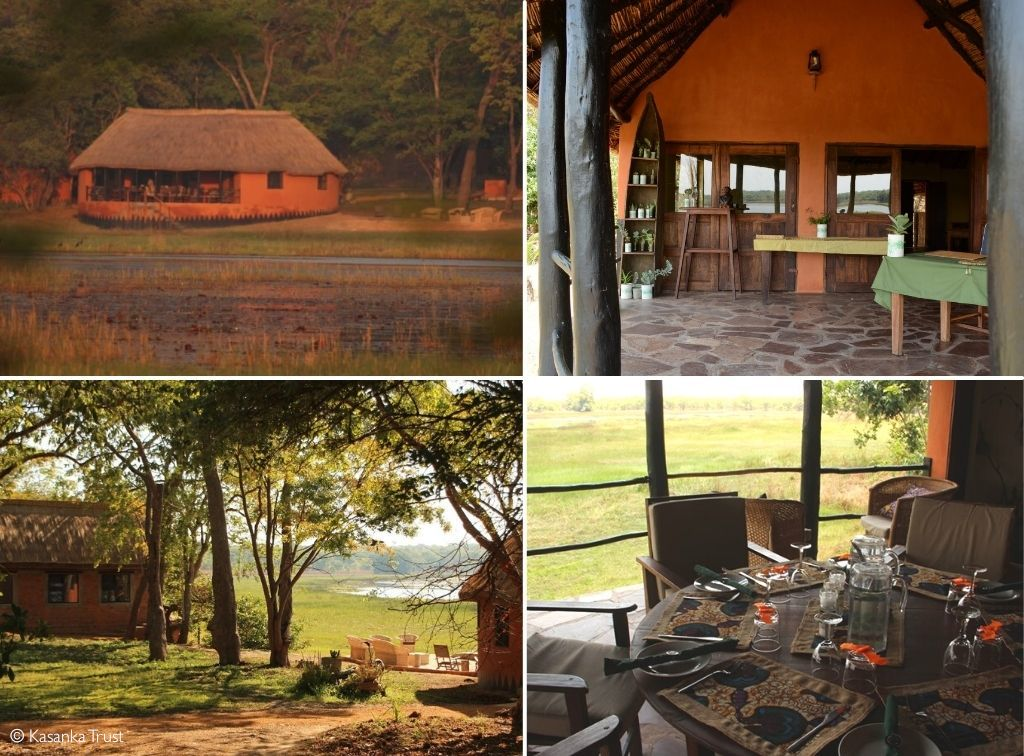 Where to stay for the Kasanka bat migration