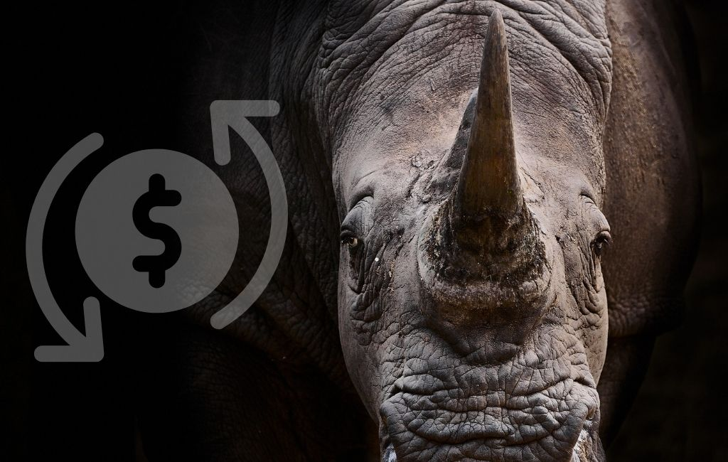 Banks must help fight illegal wildlife trade