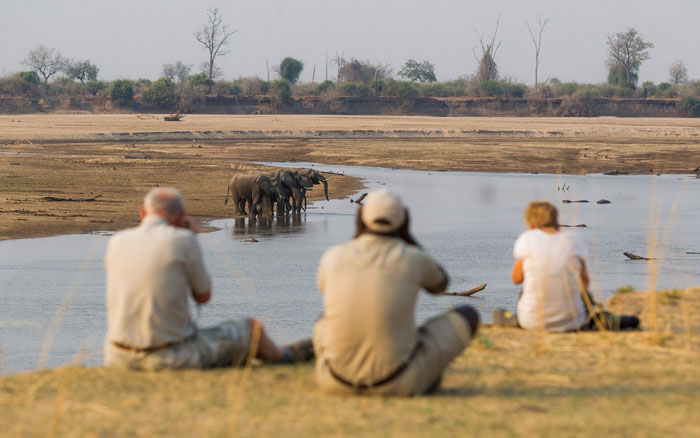 luangwa-national-park-photo-safari